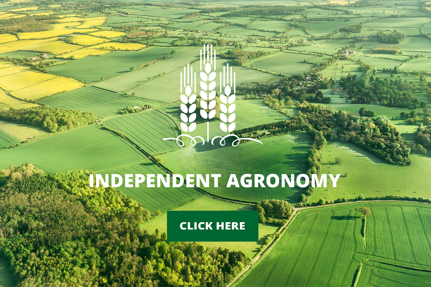 Independent Agronnomy